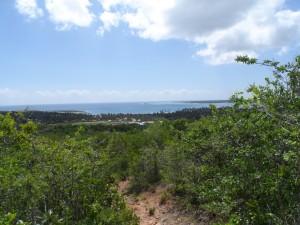 KT Ocean View