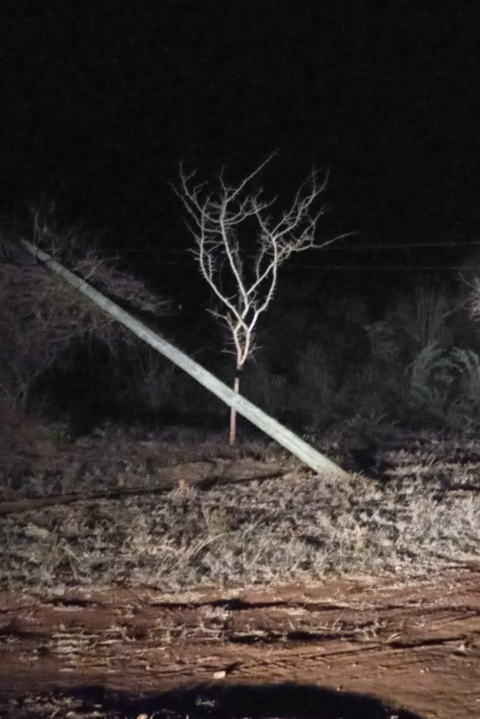 Fallen power pole